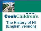 The History of HI
