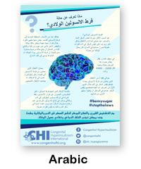 Arabic CHI Poster