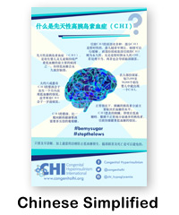 Chinese Simplified CHI Poster