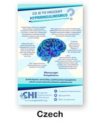 Czech CHI Poster